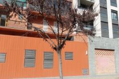 arbre_Pl_Caterina_Albert3