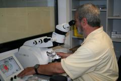 12-13_Visita_microscopi_electr#U00f2nic_(9)